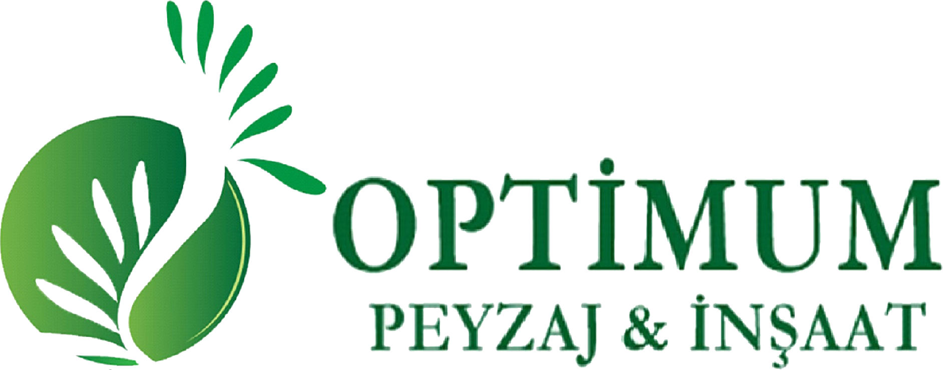 Optimum Çim
